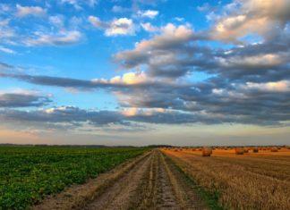 potpora poljoprivrednicima