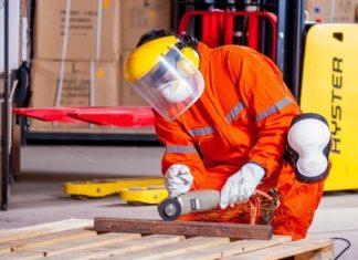 istraživanje radne snage