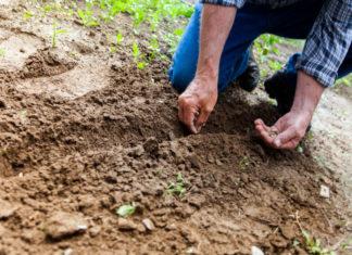 zajmovi za poljoprivrednike