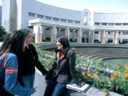 sveučilišta za programere