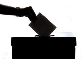 parlamentarni izbori