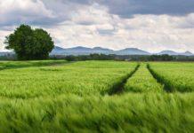 moratorij na prodaju zemljišta