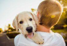 biti vlasnik psa i zaposlen