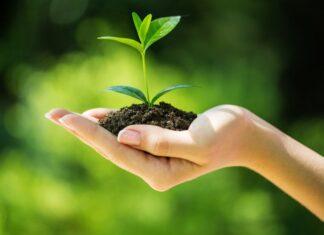 Izazovi održivog poslovanja u proizvodnim kompanijama