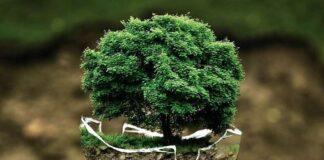 Konferencija o zaštiti okoliša